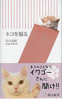 20070313catbook