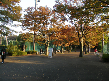 20081113j4