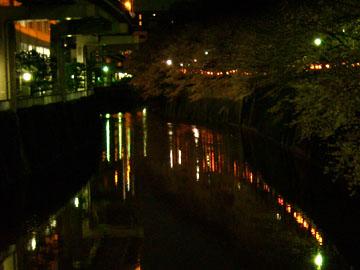 20090331sakura