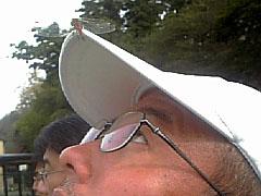 20091017tombo