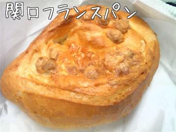 20100201sekiguchi