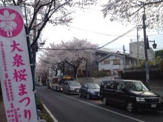 大泉桜まつり