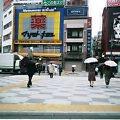 雨だよΣ(゜ロ゜;)